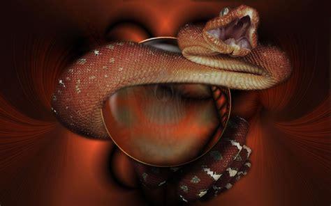 imagenes de calaveras y serpientes serpiente sobre calavera im 225 genes de miedo y fotos de