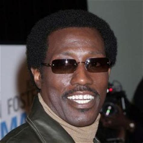 Wesley Snipes Reaches Settlement On Tax Charges by Wesley Snipes Wants Jackson Contactmusic