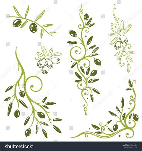 olive vector colorful olive vector set kitchen design stock vector