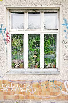 erdgeschoss fenster sichtschutz das wohnen im erdgeschoss hat untersch 228 tzte qualit 228 ten