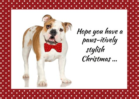 bulldog funny christmas wishes  humor pranks ecards