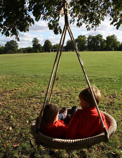 bird nest swing round birds nest swing by plants delivered