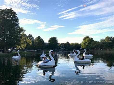 swan boats texas texas state fair visitors guide tips for planning your