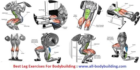 image gallery leg exercises