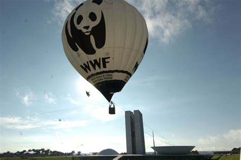 WWF recognizes insurer for conservation efforts