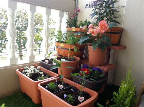 14 Best Diy Self Watering Container Garden Ideas Balcony Balcony Container Gardening Ideas