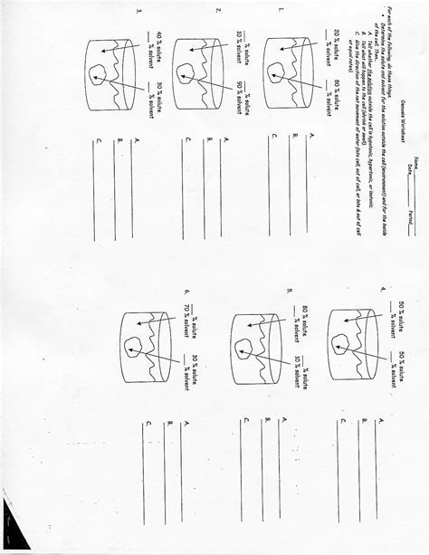 Diffusion And Osmosis Worksheet Key by 16 Best Images Of Diffusion Osmosis Active Transport