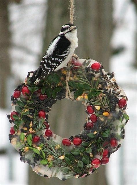 64 best diy bird feeders to make with kids images on