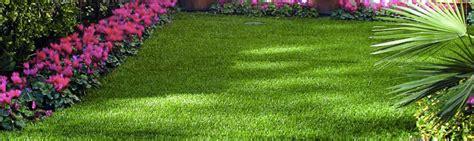 erba sintetica per giardini prezzi i prezzi dell erba sintetica per il tuo giardino
