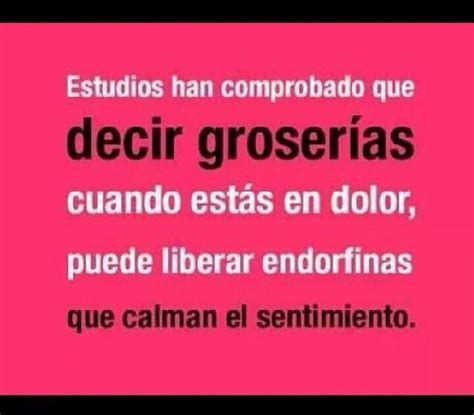 imagenes con groserias groserias frases pinterest mexican words and spanish