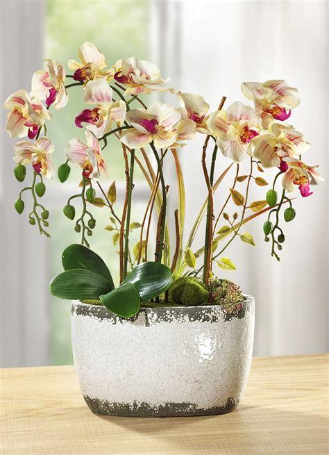 orchidee im schlafzimmer orchidee im keramiktopf kunst textilpflanzen