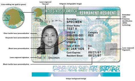 resident green card template the resident or green card unh global