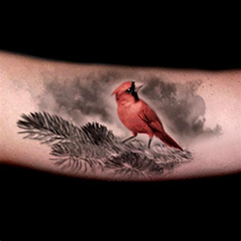 red cardinal tattoo best 25 cardinal tattoos ideas on