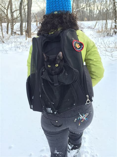 what backpacks are best for cats adventure cats