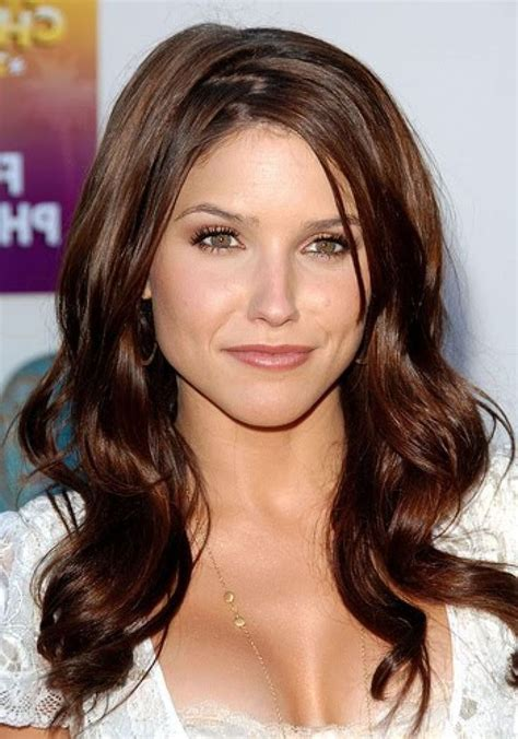 pictures of chestnut brown hair color with highlights and lowlights on american hair 15 must see chestnut brown hair pins warm browns