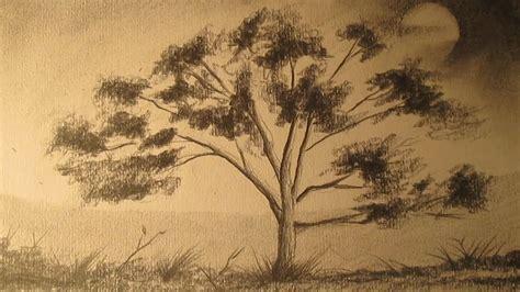 imagenes a lapiz de arboles c 243 mo dibujar un 225 rbol a l 225 piz para principiantes dibujos