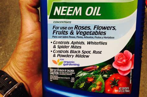 neem oil pesticide hunker