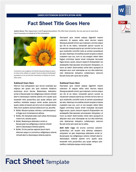 template fact sheet sle fact sheet template 21 free documents