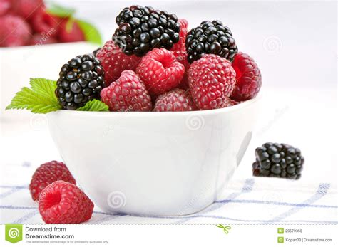 raspberries and blackberries in a white bowl stock photo
