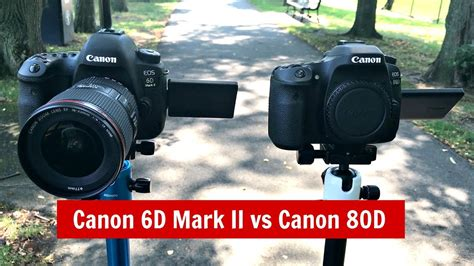 canon 6d test canon 6d ii vs canon 80d which to buy dynamic range