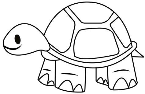 easy drawing tortoise pictures to colour coloring europe travel guides
