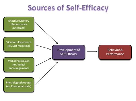 L Efficacy by Fall 2013 Self Efficacy Study Psych 484 Work