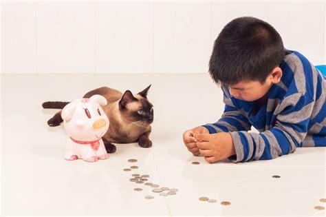 average cost of vet visit for