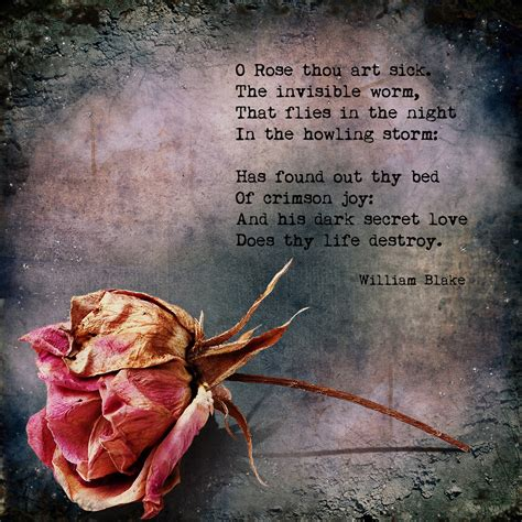 theme sick rose william blake analysis on the sick rose by william blake formalistic