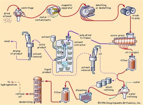 fat  oil processing chemistry britannicacom