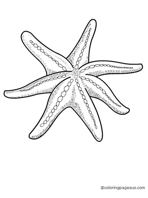 cute starfish coloring pages free coloring pages of starfish