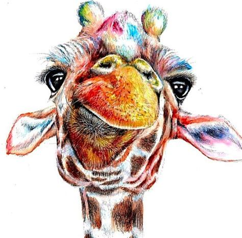 drawing and painting animals animal art colours cute giraffe paint painting image 2653431 by lauralai on favim com