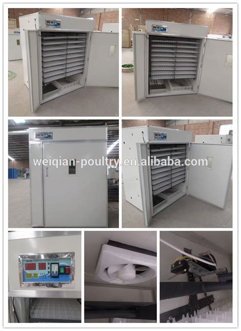 used cabinet incubator for sale antique restaurant display