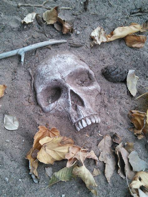 Skull Garden by Realistic Buried Skull Garden Stones Creepbay