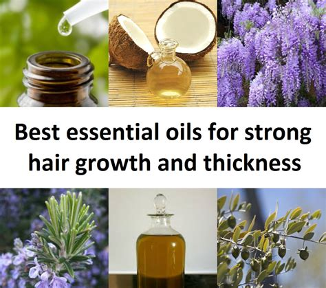essential oils for hair growth and thickness best essential oils for strong hair growth and thickness