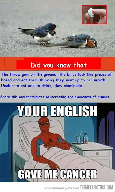 Spiderman Cancer Meme Generator - spiderman cancer meme generator 28 images spiderman