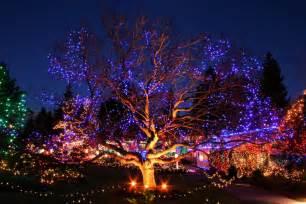Vandusen Botanical Garden Festival Of Lights 6 Family Friendly New Year S Events In Vancouver Kitsilano Ca