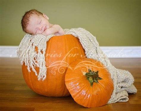 baby pumpkin pumpkin baby togrophy