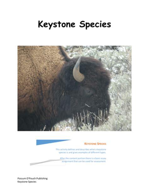 understanding biodiversity i by bsosnicki teaching