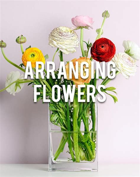arranging flowers arranging flowers rc willey