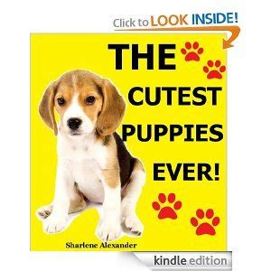 cutest puppies book the cutest puppies by sharlene reviews discussion bookclubs lists