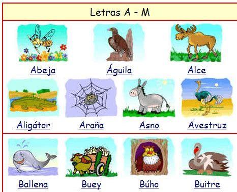Imagenes De Animales Que Empiezen Con La Letra D | animales con a m 225 s de 100 animales de ejemplo e imagenes