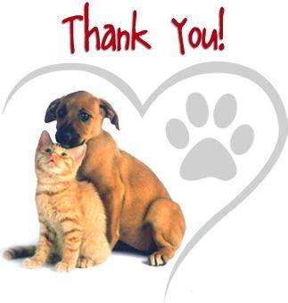 tuscarawas county pound news about the tuscarawas county humane society animal shelter thanks to the cause