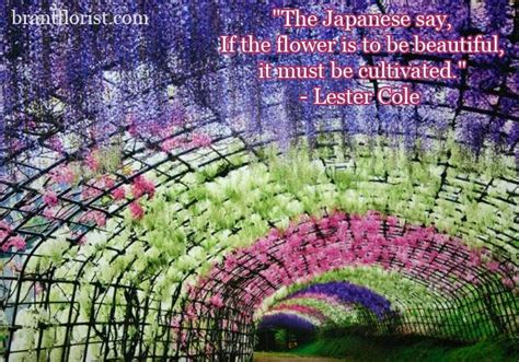 Flower Garden Quotes Quotesgram Quotes On Gardens And Flowers