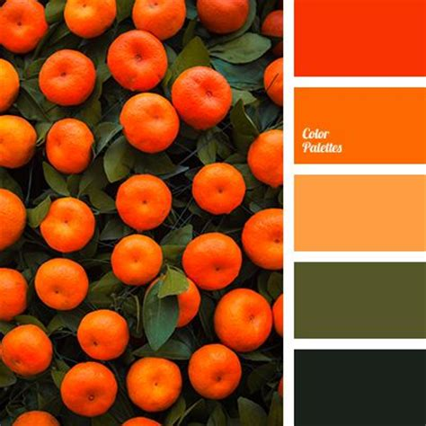 what color matches orange 25 best ideas about orange color palettes on