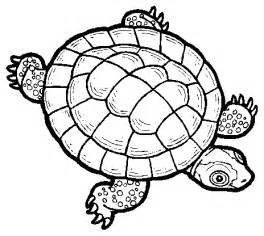 what color is a turtle turtle rock coloring pages