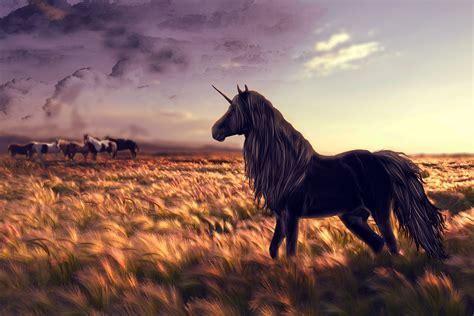 Black Unicorn Hd Wallpaper | black unicorn hd desktop wallpaper wallpapers new hd