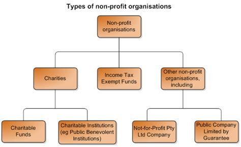 what is a non charitable not for profit company