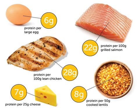 how much protein in a the problem with high protein diets 12wbt