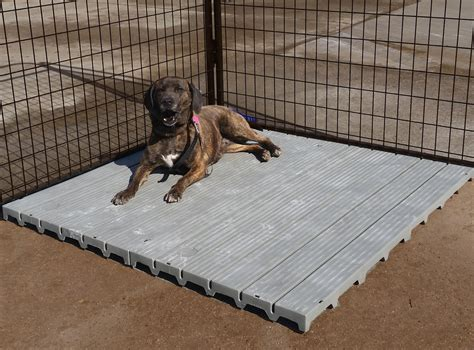 best fence for dogs best indoor pet fence peiranos fences the effective and save indoor pet fence idea