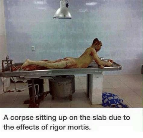 human rigor mortis www pixshark com images galleries